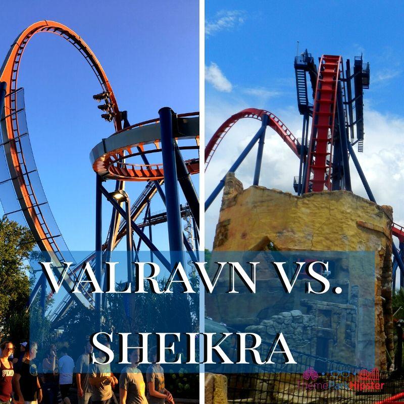 Valravn vs Sheikra Dive Roller Coaster