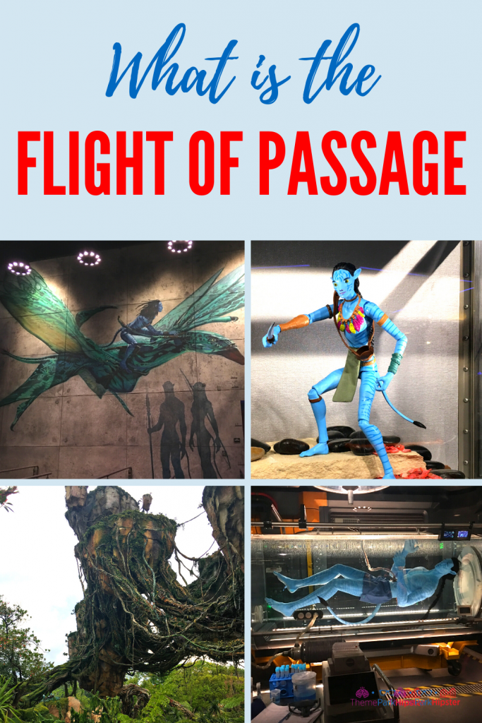 What is the Pandora Flight of Passage Ride with Tips and Guide
