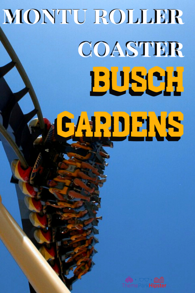 montu roller coaster busch gardens