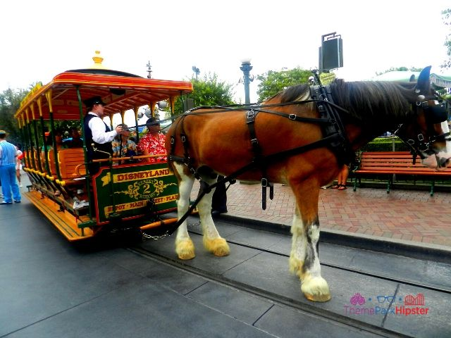 Disneyland Horse and Trolley on Main Street USA