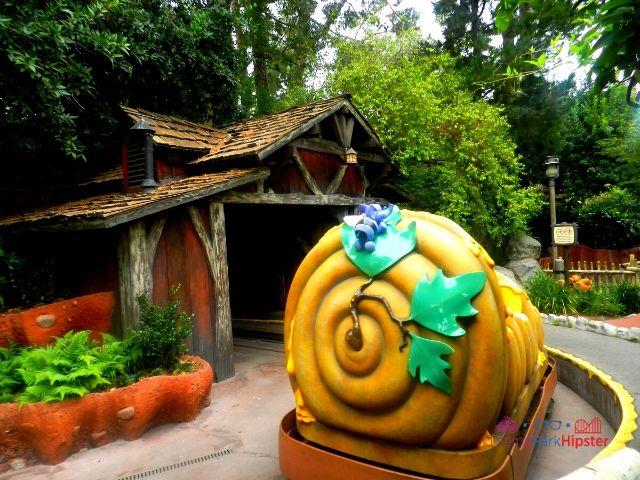 Disneyland Winnie the Pooh Ride