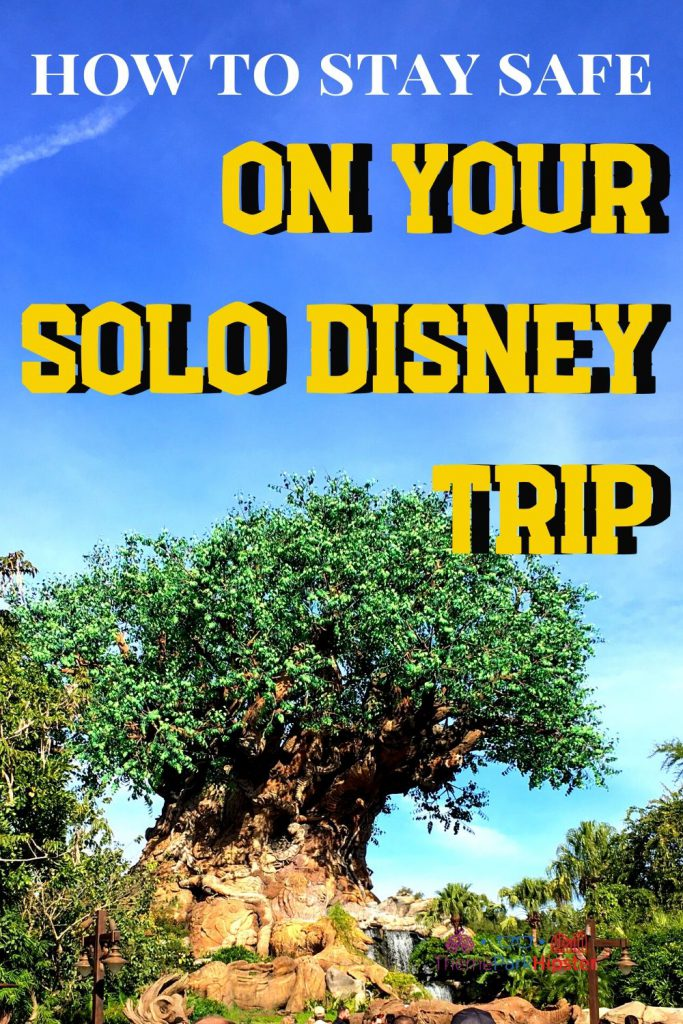 How to stay safe on your solo Disney trip