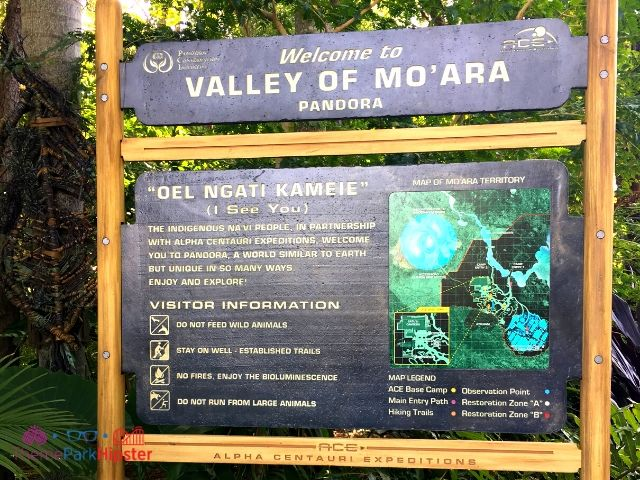 Valley of Mo'Ara Sign in Pandora World of Avatar