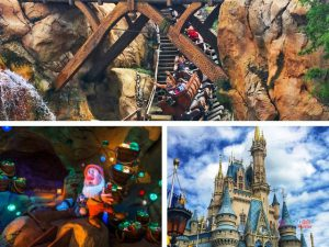 Seven Dwarfs Mine Train with Roller Coaster Zooming by