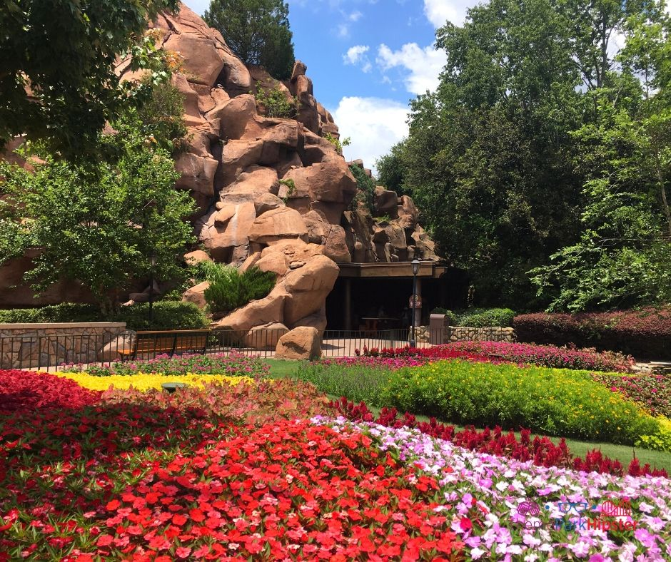Epcot Pavilion Garden with red and pink flowers