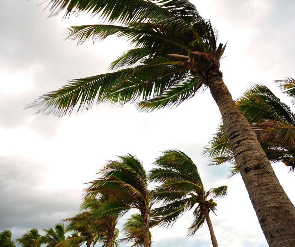 Hurricane Season at Walt Disney World in Florida