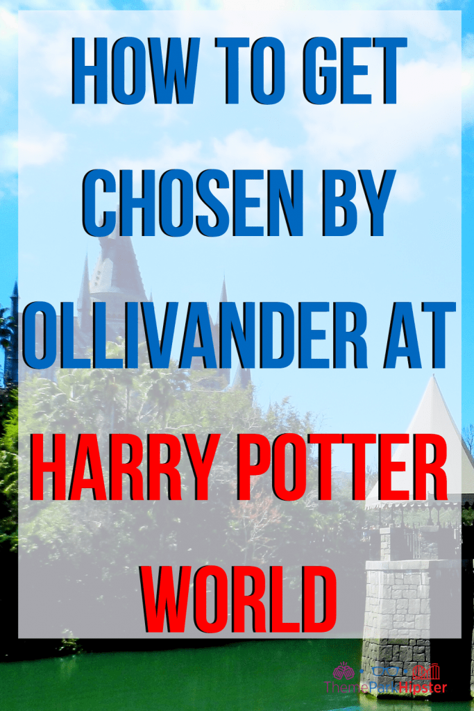 How to get chosen by Ollivanders at harry potter world