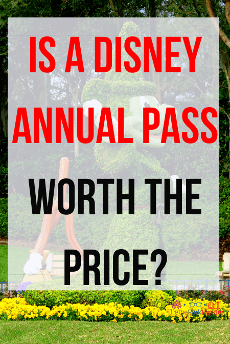 Is a Disney annual pass worth the price