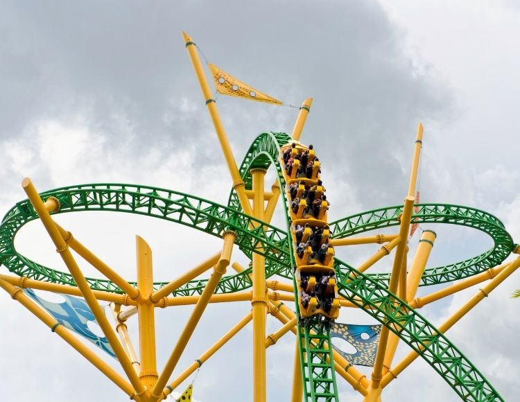 Cheetah Hunt Roller Coaster at Busch Gardens Tampa Canva