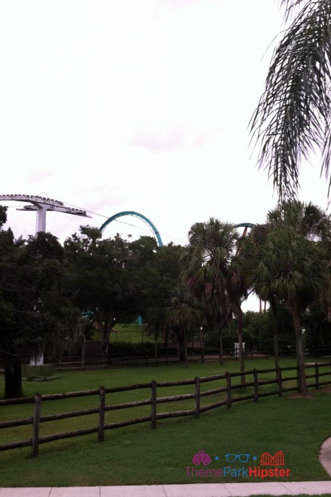 Skyride view at Busch Gardens