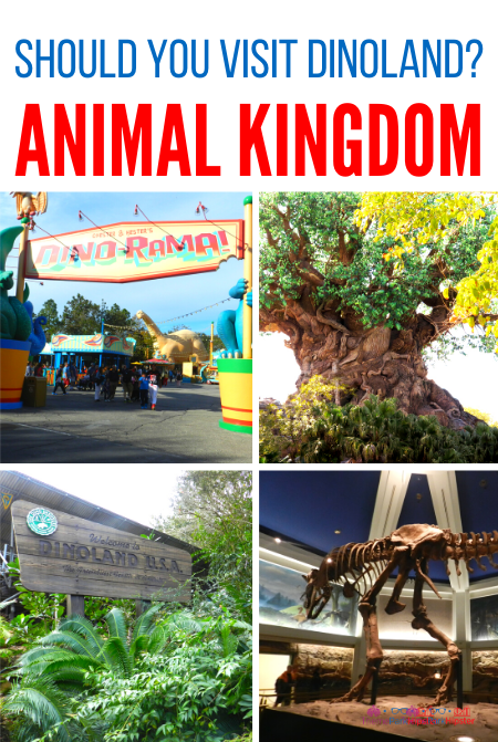 Should you visit dinoland at Disney Animal Kingdom_