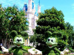 Minnie and Mickey Mouse Topiary in Front of Cinderella Castle