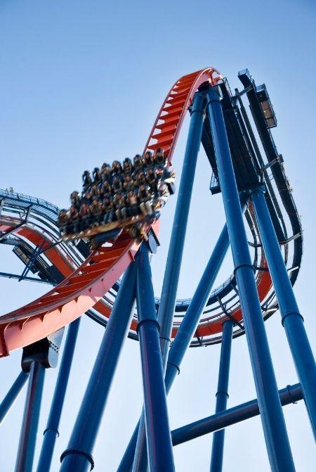 Sheikra Busch Gardens Roller Coaster
