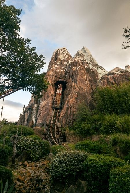 Animal Kingdom Expedition Everest Roller Coaster. One of the best animal kingdom rides.