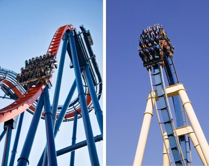 Busch Gardens Tampa Florida Sheikra and Montu Roller Coaster