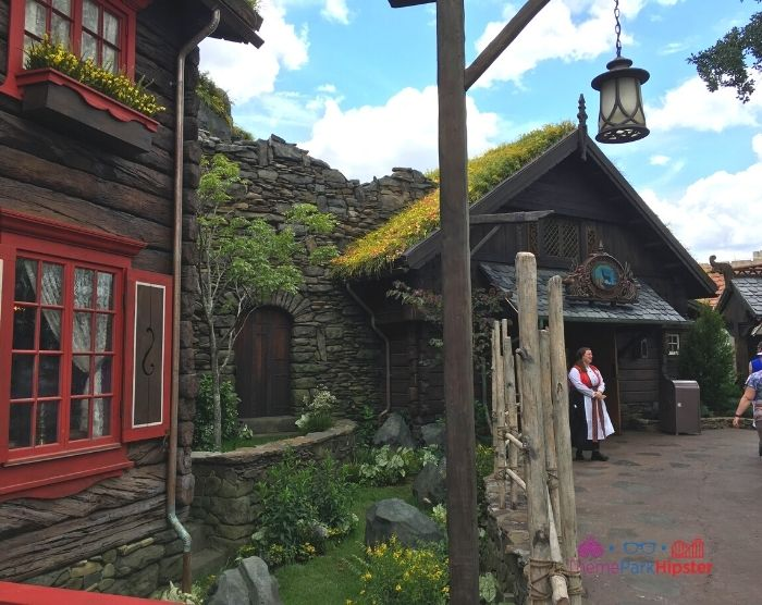 Norway Frozen Summer House Entrance and Store