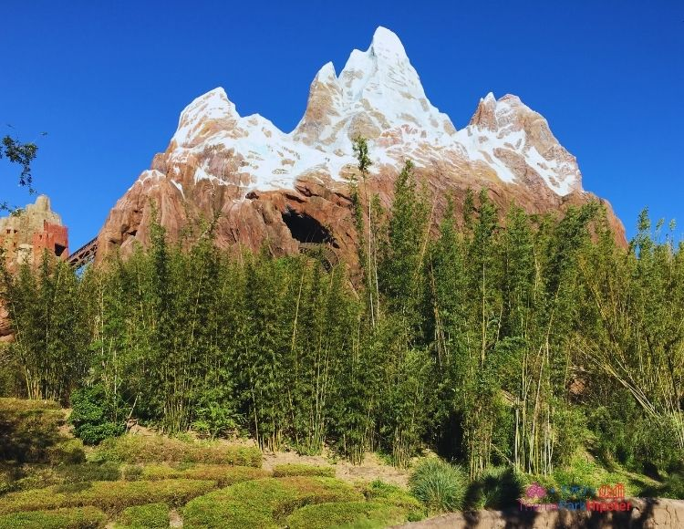 Animal Kingdom Expedition Everest