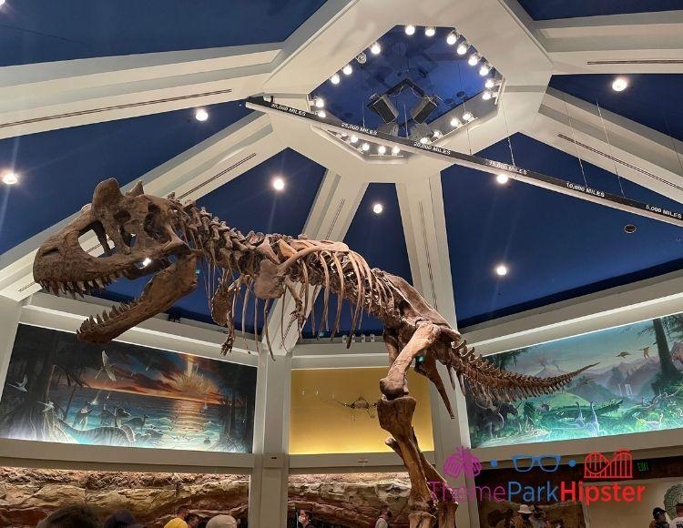 DINOSAUR Ride at Animal Kingdom with Tyrannosaurus Rex
