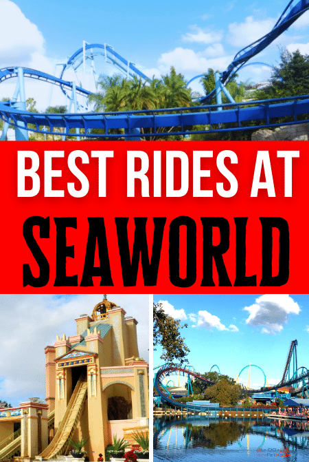 Best rides at SeaWorld Orlando