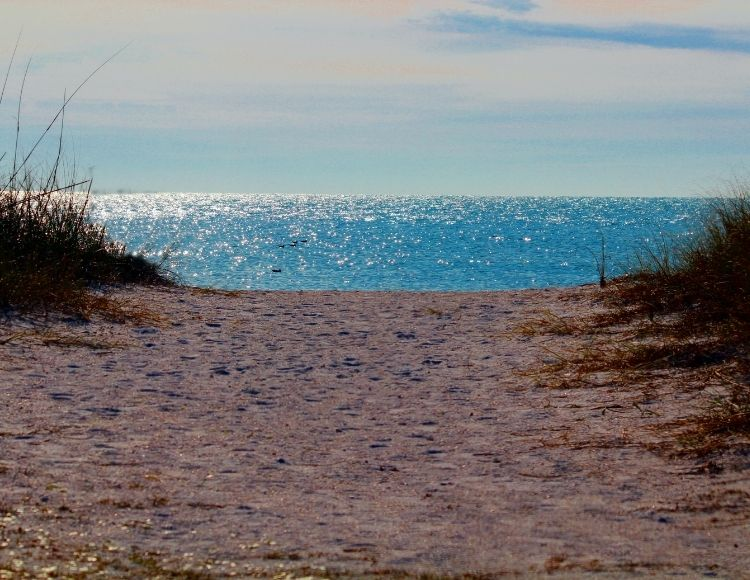 Honeymoon Island State Park in Florida