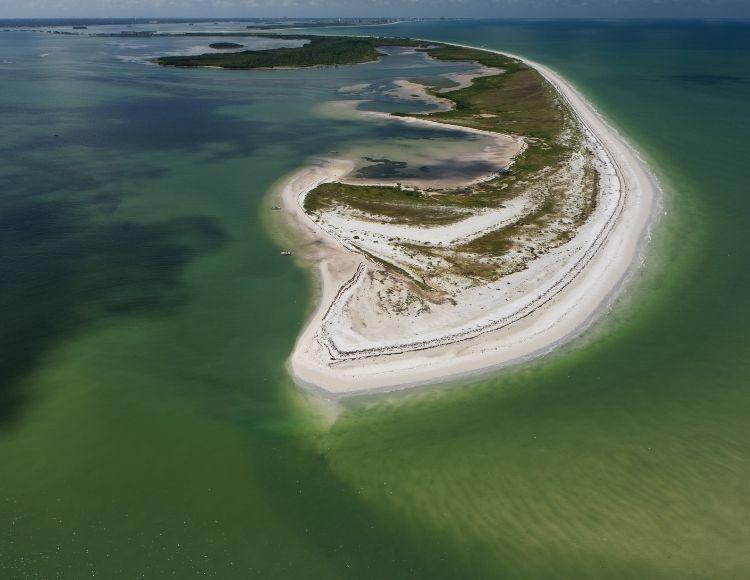 Honeymoon Island State Park on Florida Gulf Coast Barrier Island. Making it the best beach close to Disney.
