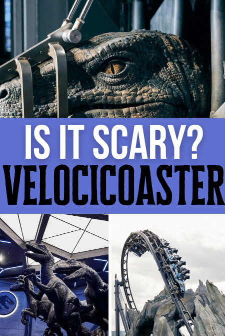 Is Velocicoaster Roller Coaster Scary at Universal Islands of Adventure
