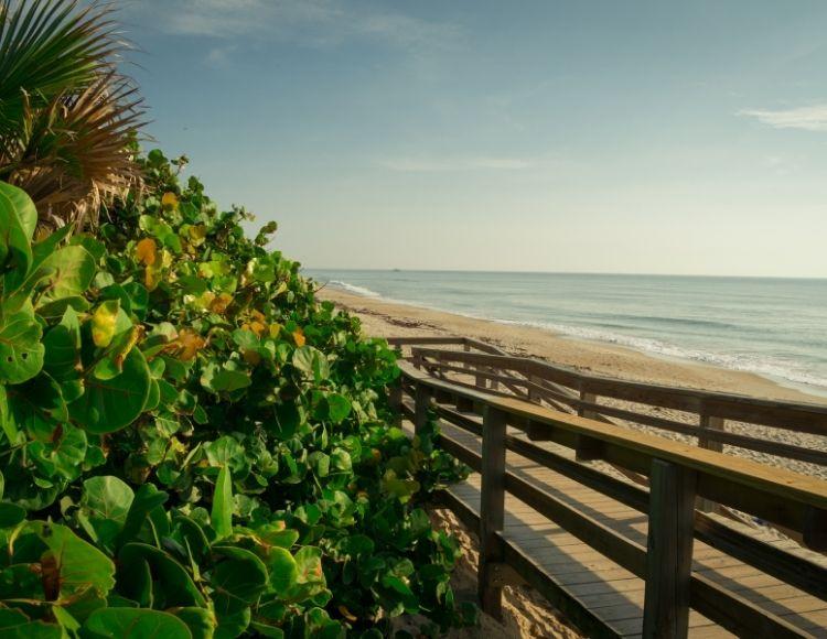 Satellite Beach Florida natural scenery. Making it the best beach close to Disney.