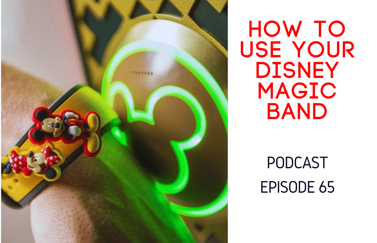 How to use your disney magic band (1)